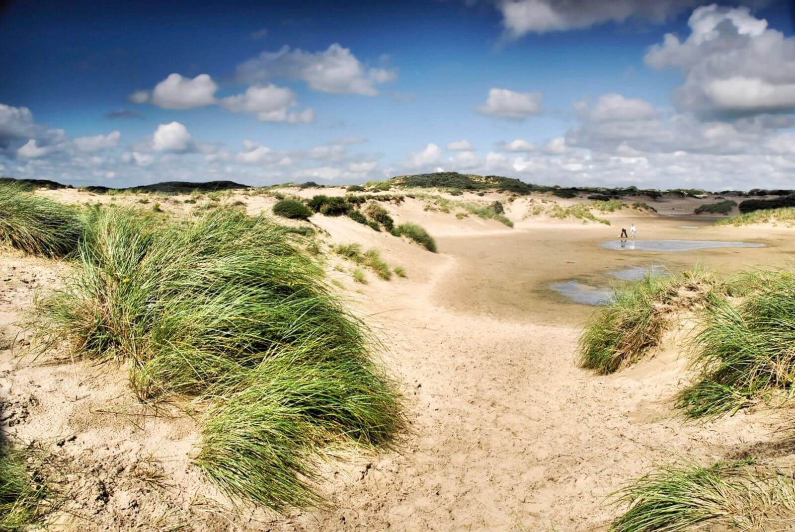 Image Beach